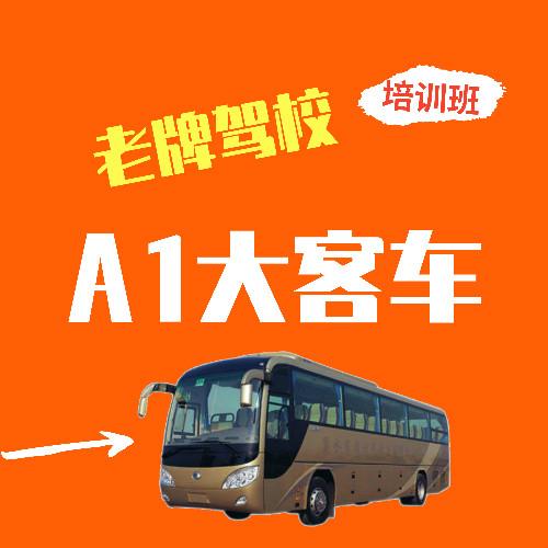 A1大客车标准班